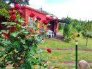 Inmobiliaria Aloja - OPORTUNIDAD! U$S 55.000 Casa en Venta de 2 dormitorios con 2.500 m<sup>2</sup> de terreno en La Banda, San Marcos Sierras